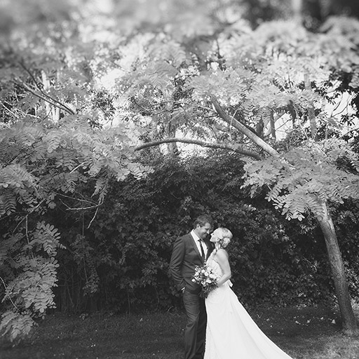 Best South Coast Wedding Photography